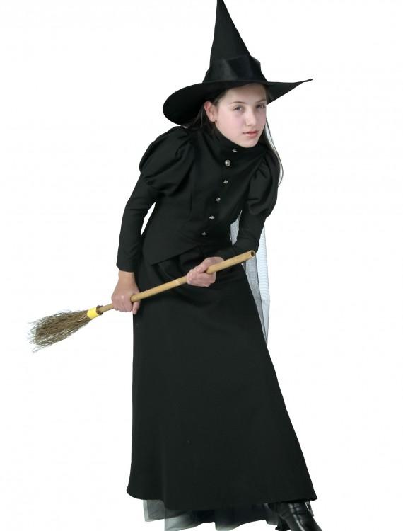 Deluxe Child Witch Costume, halloween costume (Deluxe Child Witch Costume)