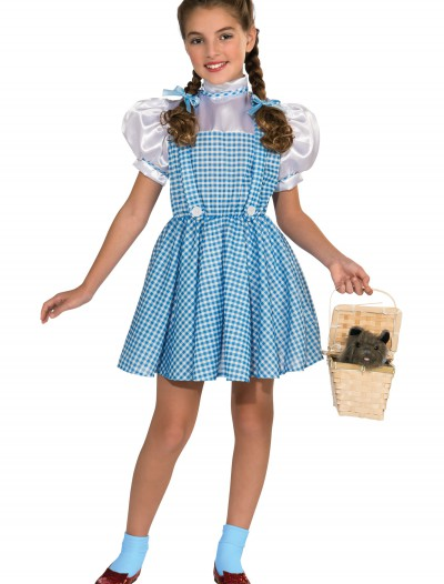 Dorothy Child Costume, halloween costume (Dorothy Child Costume)