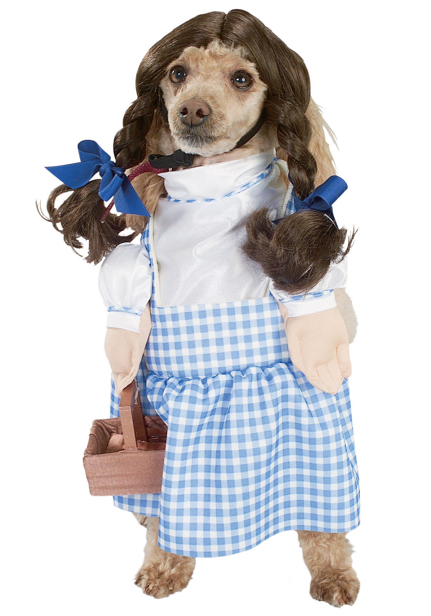 Dorothy Dog Costume  sc 1 st  Halloween Costumes & Dorothy Dog Costume - Halloween Costumes