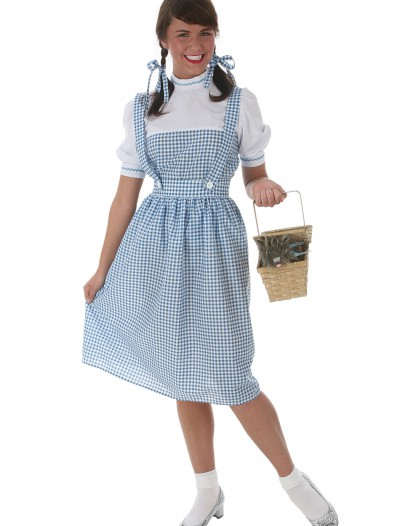 Kansas Girl Long Dress Costume, halloween costume (Kansas Girl Long Dress Costume)