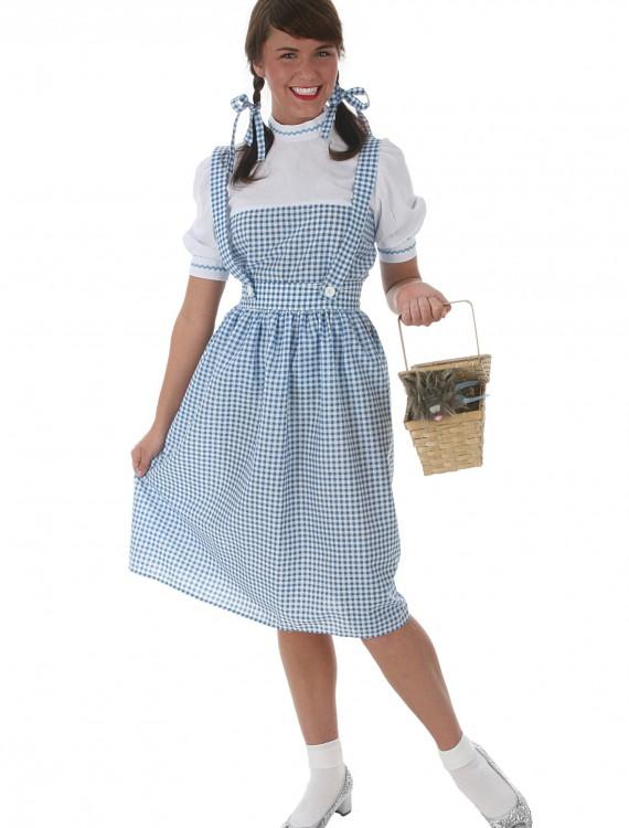 Kansas Girl Long Dress Costume, halloween costume (Kansas Girl Long Dress Costume)