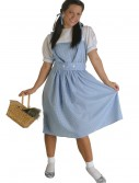 Kansas Girl Plus Size Costume, halloween costume (Kansas Girl Plus Size Costume)