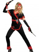 Dragon Lady Ninja Costume, halloween costume (Dragon Lady Ninja Costume)