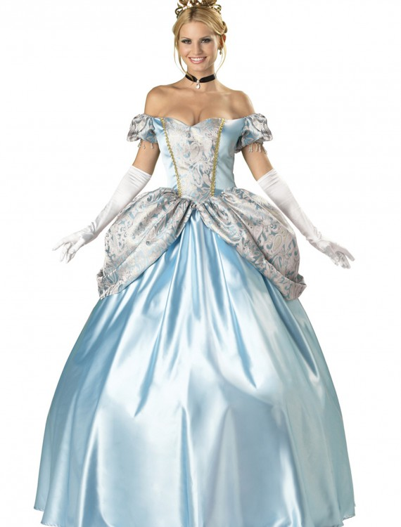 Elite Enchanting Princess Costume, halloween costume (Elite Enchanting Princess Costume)