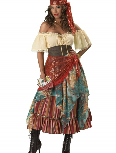 Elite Fortune Teller Costume, halloween costume (Elite Fortune Teller Costume)
