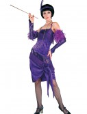 Fabulous Purple Flapper Costume, halloween costume (Fabulous Purple Flapper Costume)
