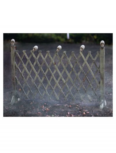 Fence With Skulls, halloween costume (Fence With Skulls)