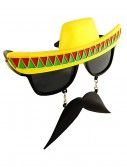 Fiesta Sunglasses, halloween costume (Fiesta Sunglasses)