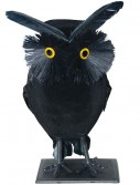 Flocked Owl, halloween costume (Flocked Owl)