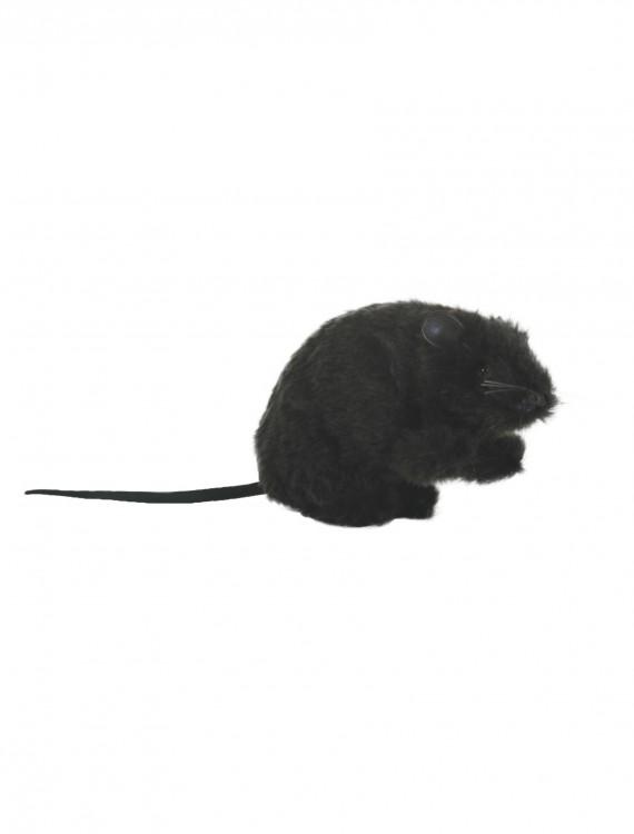 Furry Rat, halloween costume (Furry Rat)
