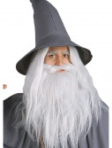 Gandalf Beard Kit, halloween costume (Gandalf Beard Kit)