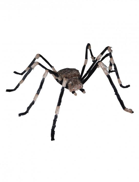 Giant Spider, halloween costume (Giant Spider)