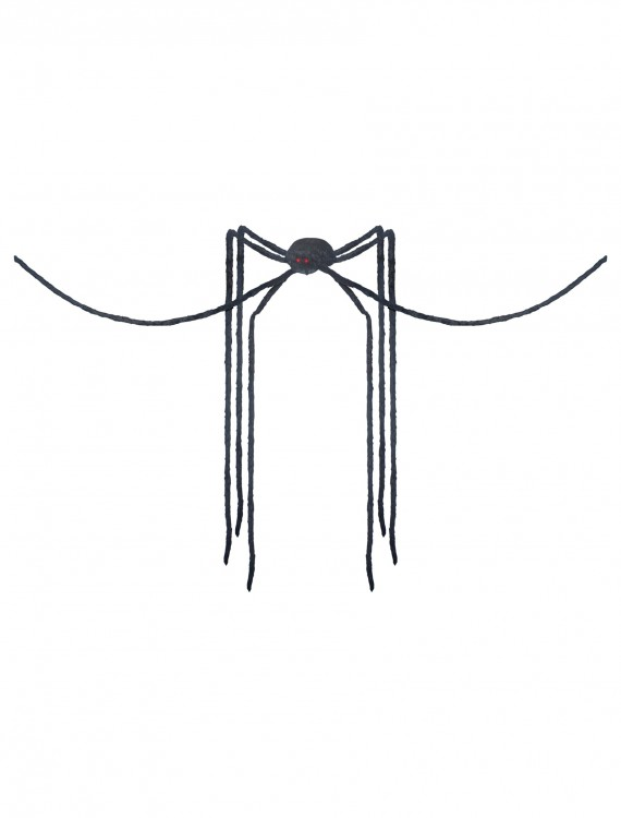 Giant Spider with Long Legs, halloween costume (Giant Spider with Long Legs)