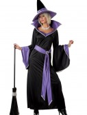 Glamour Witch Incantasia Costume, halloween costume (Glamour Witch Incantasia Costume)