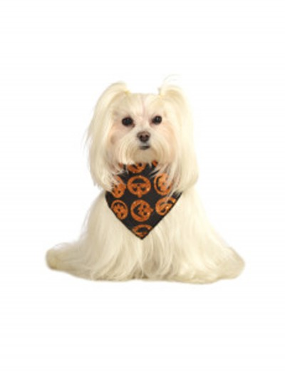 Glitter Pumpkin Bandana Pet Costume, halloween costume (Glitter Pumpkin Bandana Pet Costume)