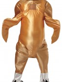 Gobbler the Turkey Costume, halloween costume (Gobbler the Turkey Costume)