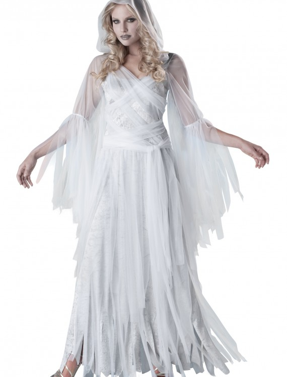 Haunting Beauty Costume, halloween costume (Haunting Beauty Costume)