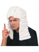 Judge Wig, halloween costume (Judge Wig)