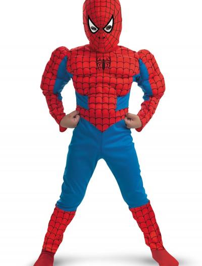 Kids Deluxe Muscle Spiderman Costume, halloween costume (Kids Deluxe Muscle Spiderman Costume)