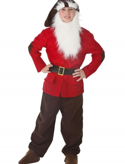 Kids Dwarf Costume, halloween costume (Kids Dwarf Costume)