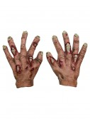 Kids Rotten Flesh Hands, halloween costume (Kids Rotten Flesh Hands)