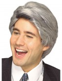 Late Night Host Wig, halloween costume (Late Night Host Wig)