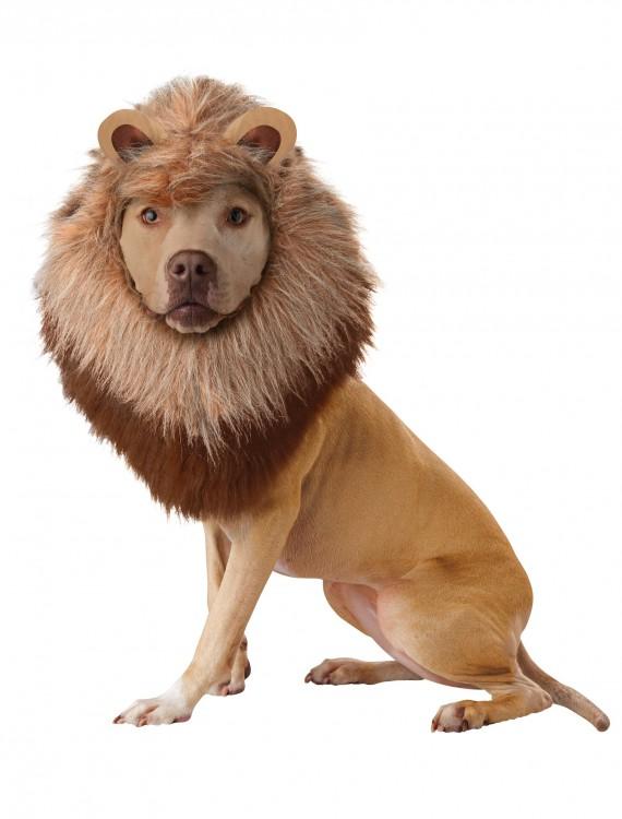 Lion Pet Costume, halloween costume (Lion Pet Costume)