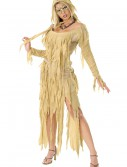 Mummy Queen Costume, halloween costume (Mummy Queen Costume)