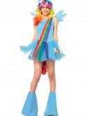 My Little Pony Rainbow Dash Adult Costume, halloween costume (My Little Pony Rainbow Dash Adult Costume)