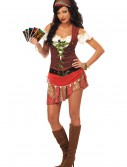 Mystic Gypsy Costume, halloween costume (Mystic Gypsy Costume)