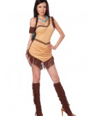 Native American Beauty Costume, halloween costume (Native American Beauty Costume)