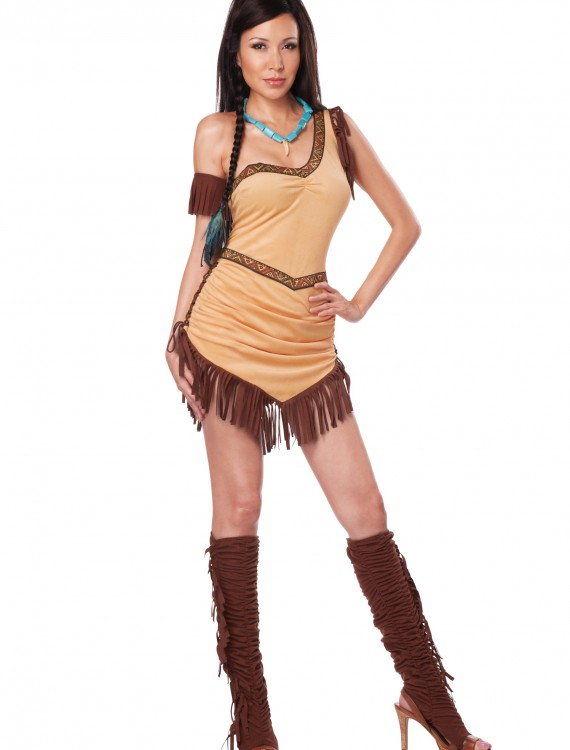 Native American Beauty Costume, halloween costume (Native American Beauty Costume)