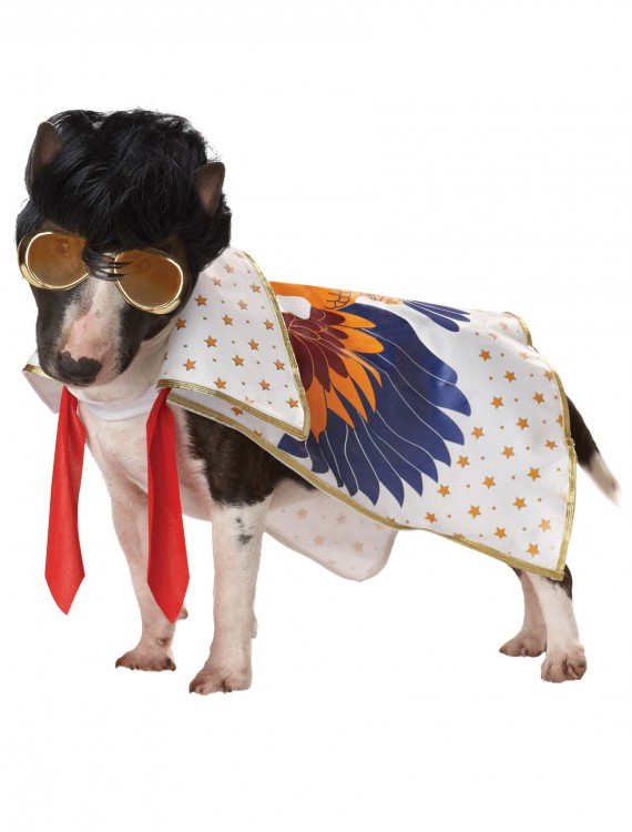 Nothin But A Hound Dog Costume, halloween costume (Nothin But A Hound Dog Costume)