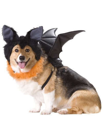 Pet Bat Costume, halloween costume (Pet Bat Costume)