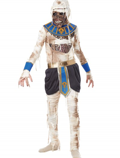 Child's Pharaoh's Revenge Costume, halloween costume (Child's Pharaoh's Revenge Costume)