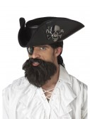 Pirate Captain Beard, halloween costume (Pirate Captain Beard)