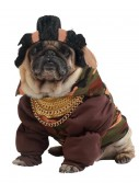 Pity the Fool Dog Costume, halloween costume (Pity the Fool Dog Costume)