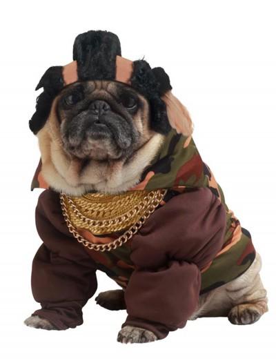 Pity the Fool Dog Costume, halloween costume (Pity the Fool Dog Costume)