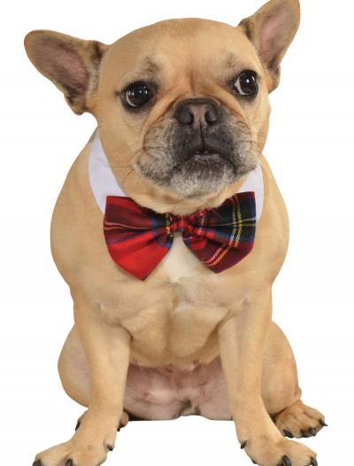 Plaid Bow Tie Pet Costume, halloween costume (Plaid Bow Tie Pet Costume)