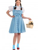 Plus Size Adult Dorothy Costume, halloween costume (Plus Size Adult Dorothy Costume)