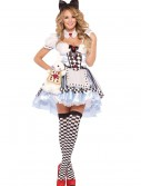 Plus Size Delightful Alice Costume, halloween costume (Plus Size Delightful Alice Costume)