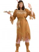 Plus Size Native American Costume, halloween costume (Plus Size Native American Costume)