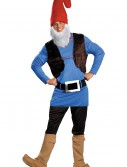 Plus Size Papa Gnome Costume, halloween costume (Plus Size Papa Gnome Costume)