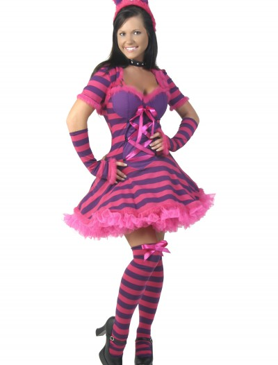 Plus Size Sexy Wonderland Cat Costume, halloween costume (Plus Size Sexy Wonderland Cat Costume)