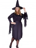 Plus Size Tattered Witch Costume, halloween costume (Plus Size Tattered Witch Costume)