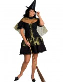 Plus Size Wicked Witch of the West Costume, halloween costume (Plus Size Wicked Witch of the West Costume)