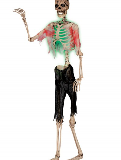 Posable Zombie Skeleton, halloween costume (Posable Zombie Skeleton)