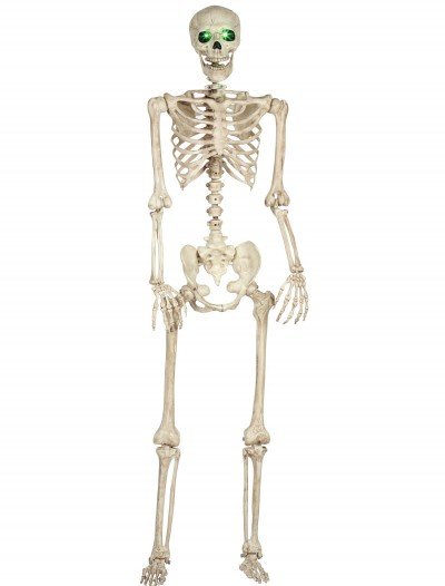 Pose-N-Stay Light Up Skeleton, halloween costume (Pose-N-Stay Light Up Skeleton)