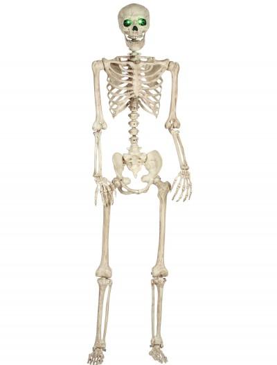 Pose-N-Stay Light Up Skeleton, halloween costume (Pose-N-Stay Light Up Skeleton)