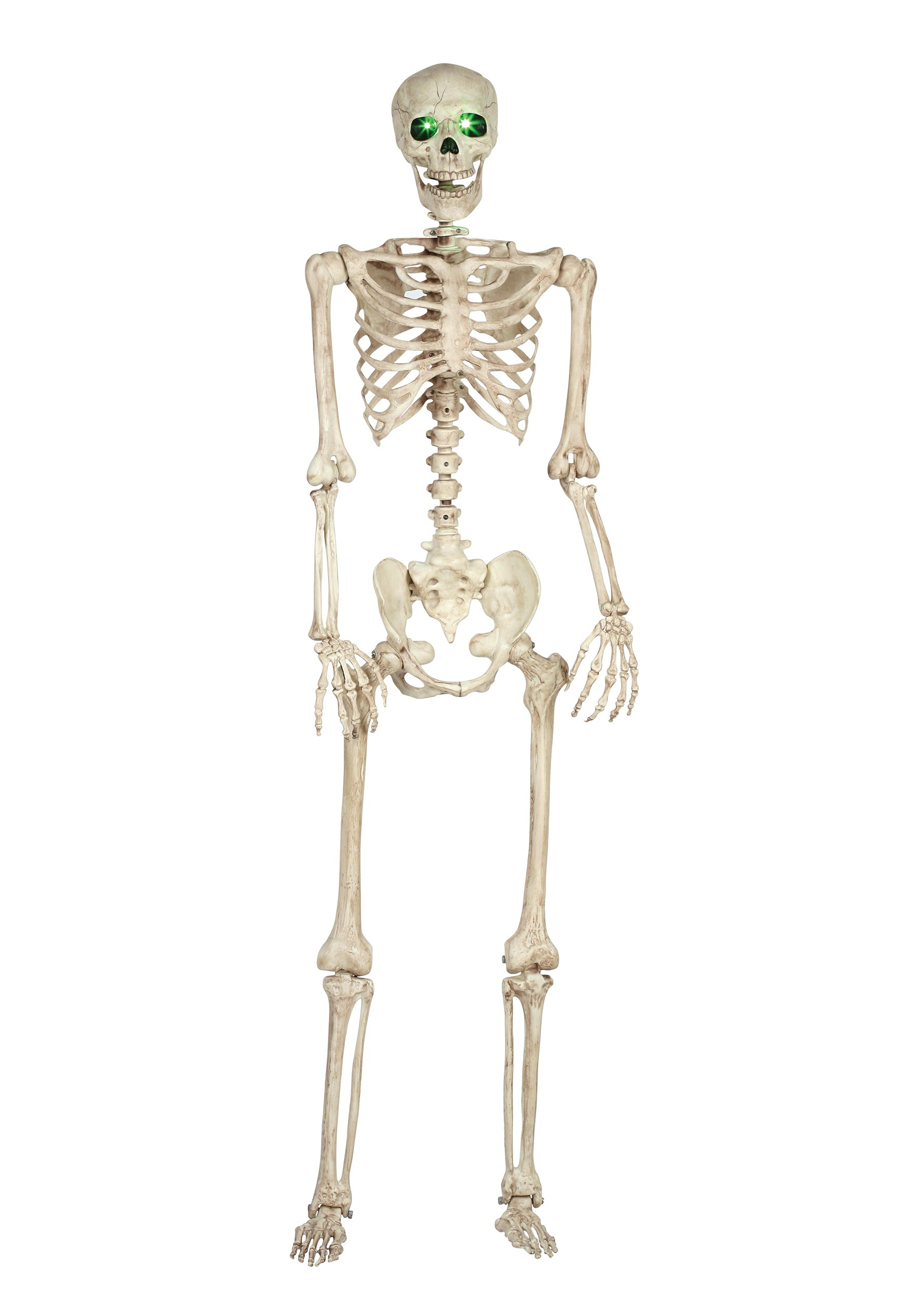 Pose-N-Stay Light Up Skeleton - Halloween Costumes